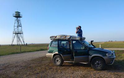 Neusiedlersee – Safari