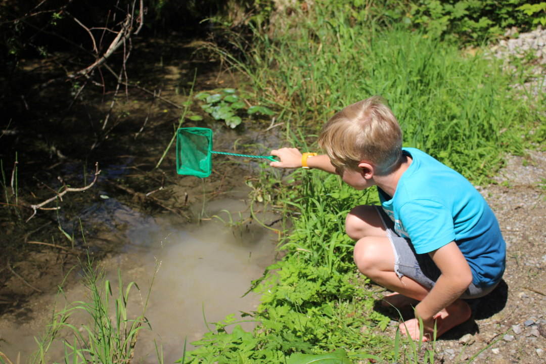 Wasserdetektive